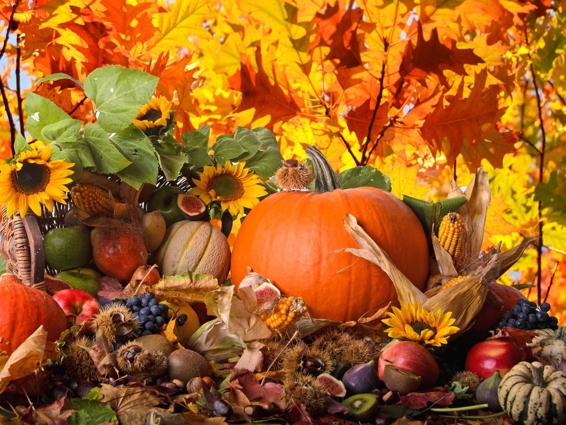 1-3 Поделки своими рукам на тему осень в садик из природного материала