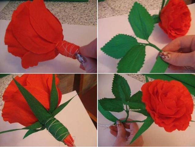 красная роза из гофрированной бумаги мастер-класс