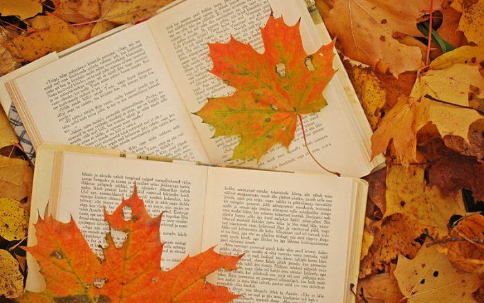 Способы сушения листьев