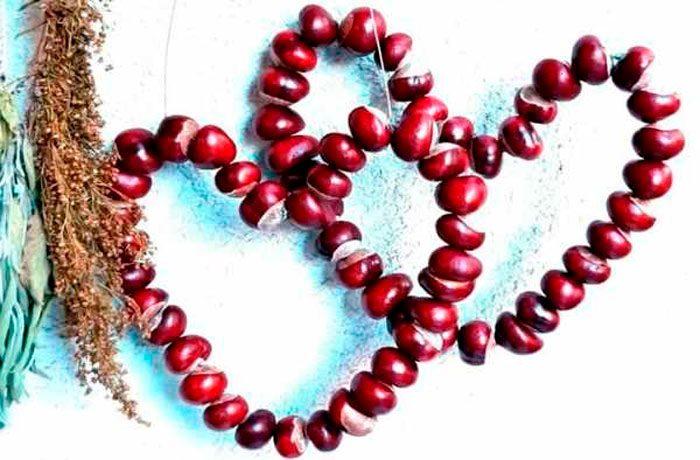 Сердца из каштанов