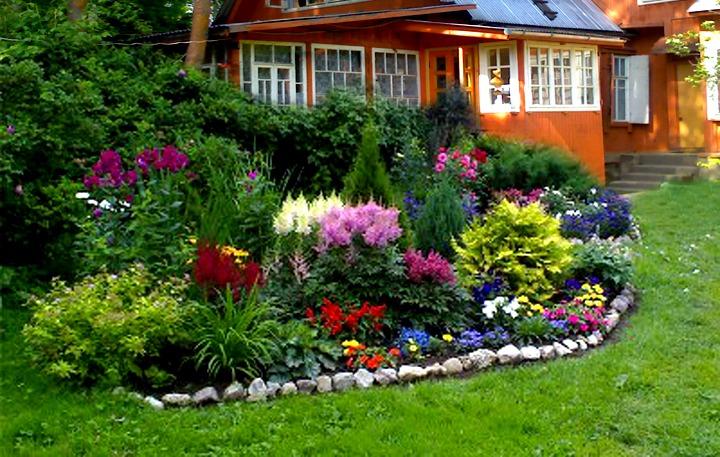 Фото цветочных клумб на даче своими руками