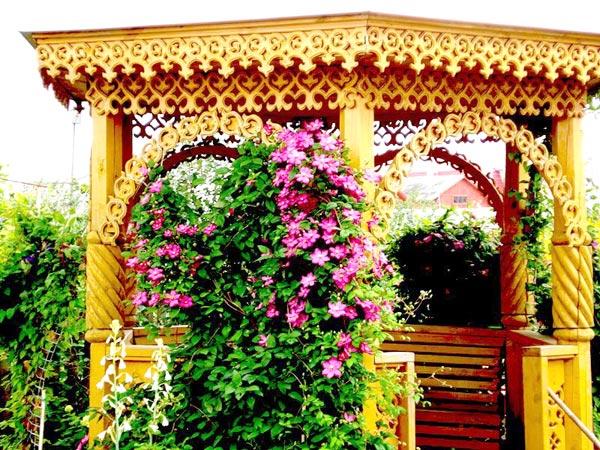 gazebo with plants
