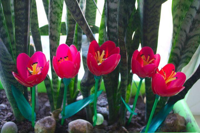 Тюльпаны из пластиковых ложек
